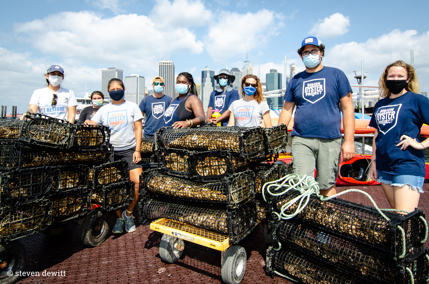 Gropu of people standing around piles of black wire cages filled with oysters