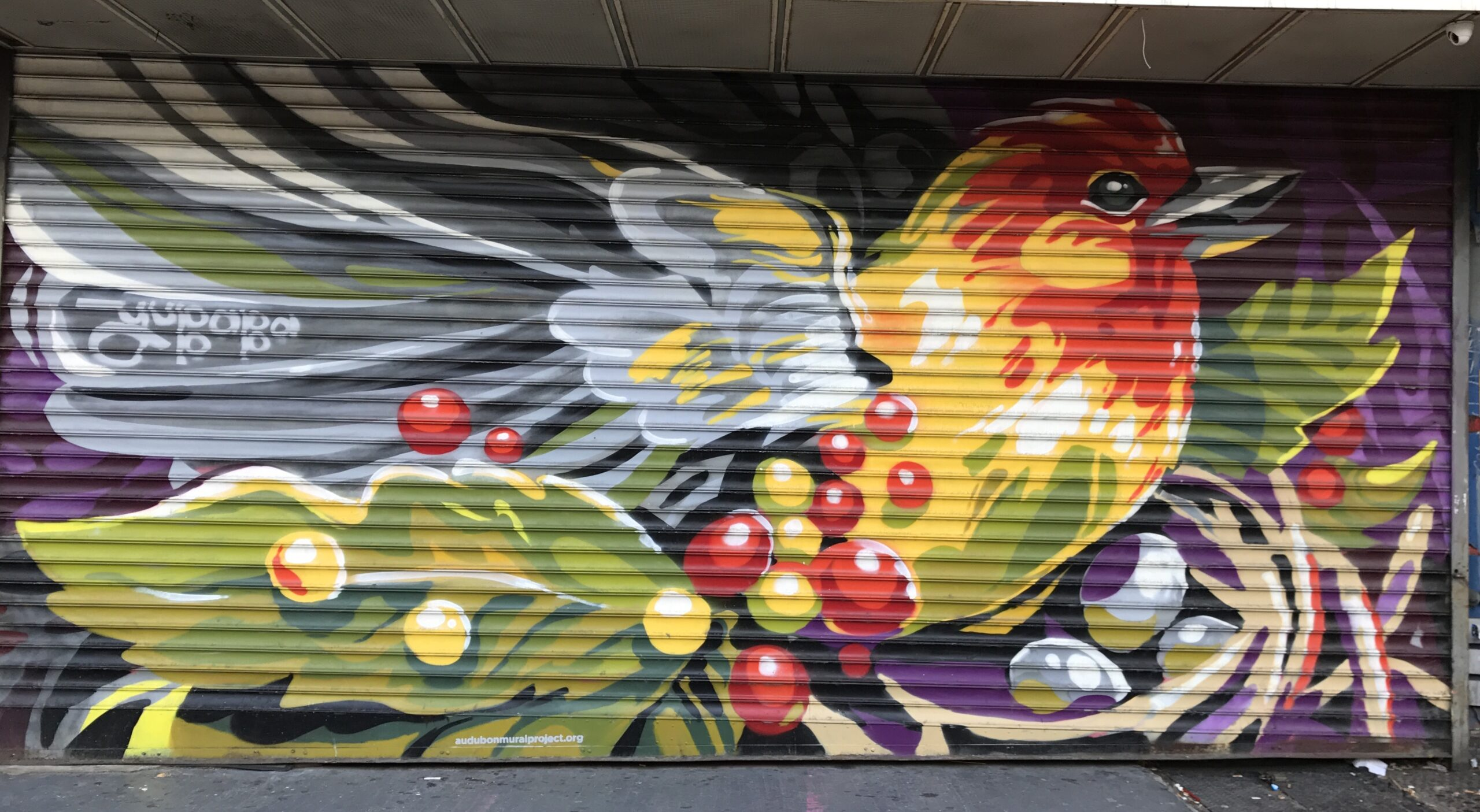 Image of a mural of a colorful bird