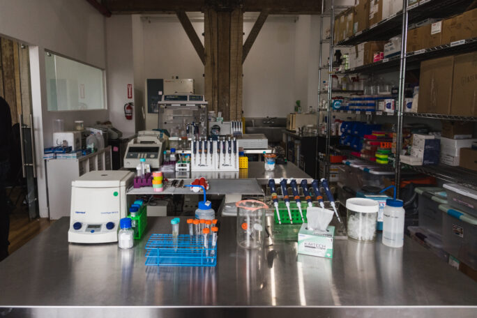 A room filled with lab benches and scientific equipment on tables and shelves