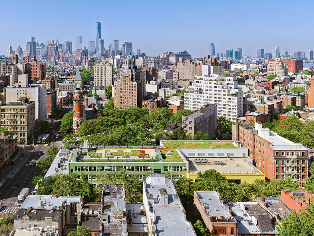 Long shot view of the PS 41 green roof