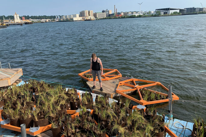 Person standing on a dock of a floating garden on the water