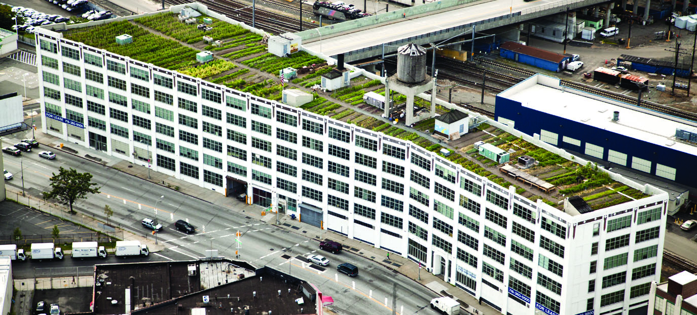 Aerial view of the rooftop garden