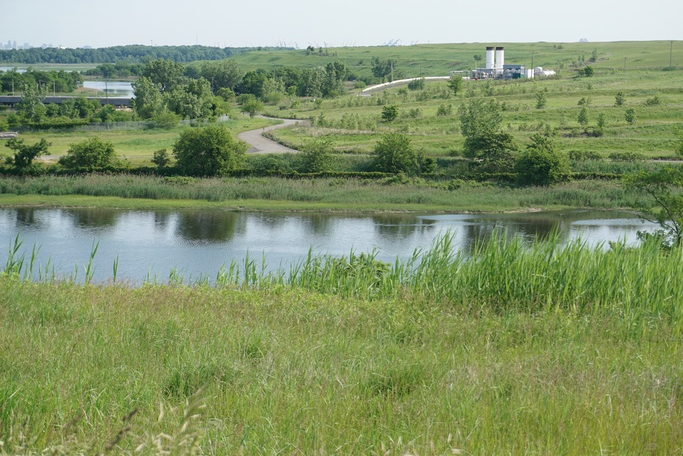 A lush green landscape with a pond in the center